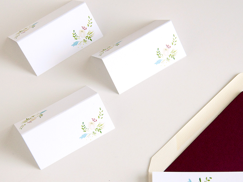 succulent and ivory place cards