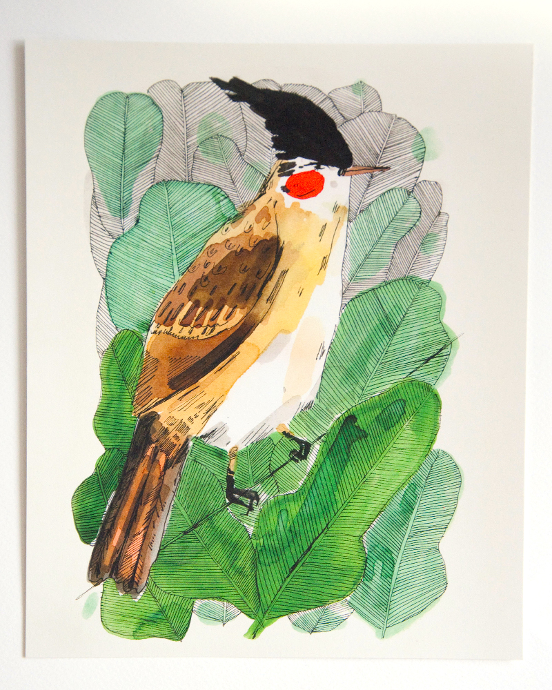 wild bird print