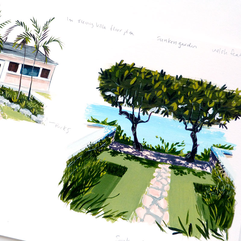 August 2016 Blog Posts - original pieces for a Jamaican program. illustrated by Laura Shema for Jolly Edition