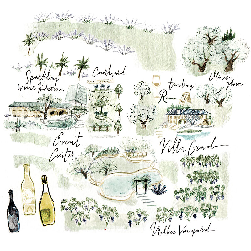 Jolly Edition Blog Post September 2017, watercolor Rava Wines Map