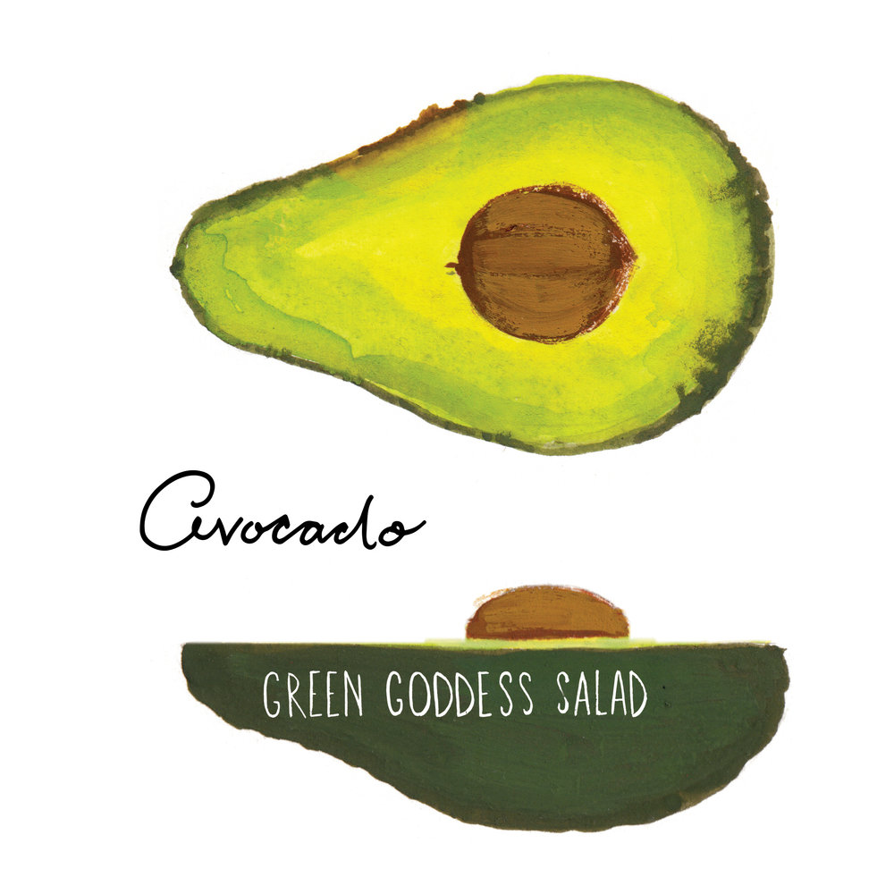 avocado illustration jolly edition food illustration