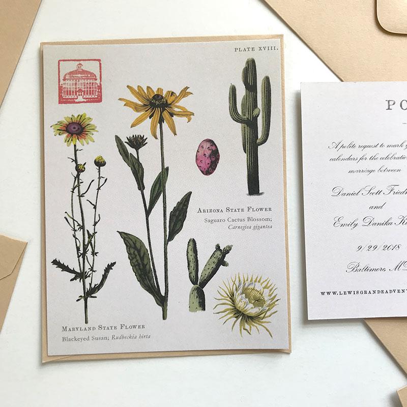 Jolly Edition Blog Post January 2018 Peabody conservatory wedding custom Save the Date botanical illustration