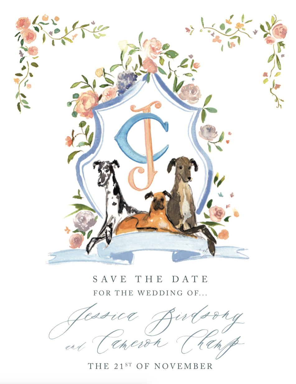 sweet-illustrated-wedding-save-the-date-jolly-edition-jessica-cameron